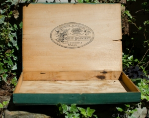 A green box from Paris.